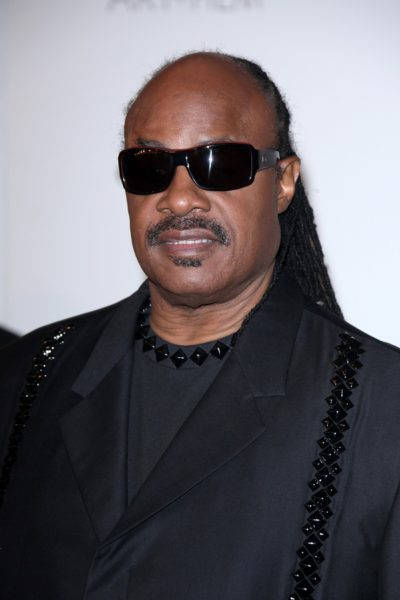 LOS ANGELES - NOV 5:  Stevie Wonder arrives at the LACMA Art + F