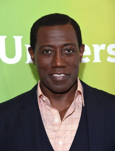 LOS ANGELES - AUG 13:  Wesley Snipes arrives to the Summer 2015
