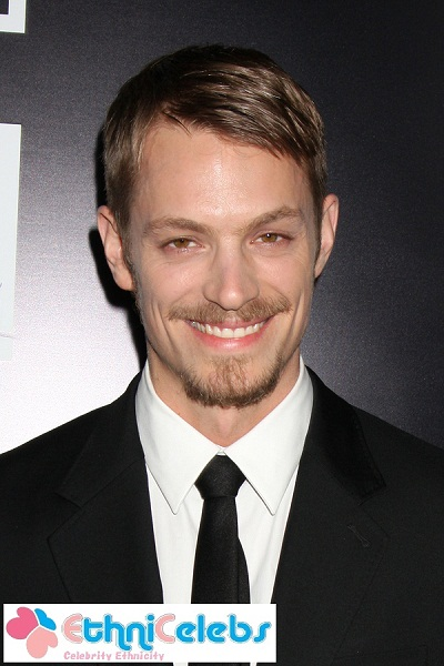 joel kinnaman eye color