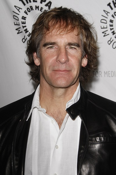 scott bakula family guy