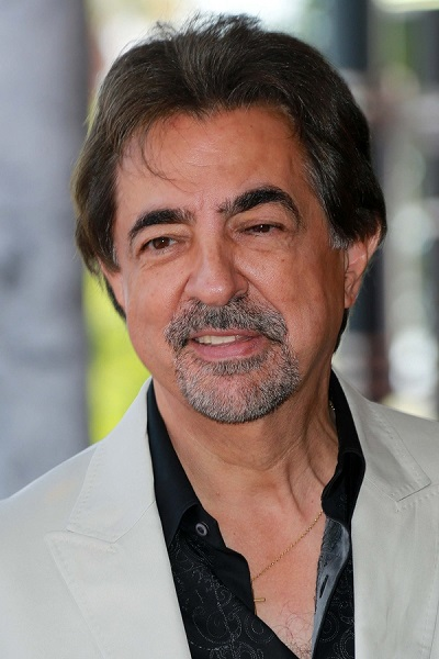 joe mantegna filme