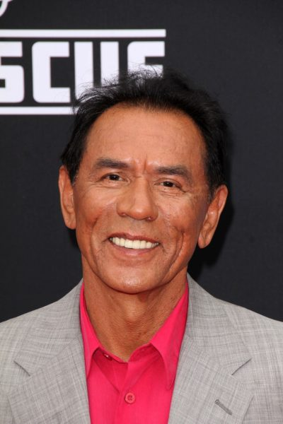 "LOS ANGELES - JUL 16:  Wes Studi at the ""Planes: Fire & Rescue"""